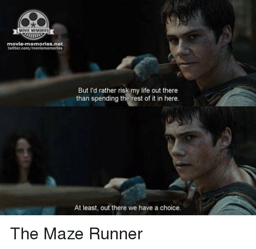 movie memories net twitter com movlemermores but id rather risk my life 11574006 ✅ 25 best memes about the maze runner the maze runner memes,Funny Maze Runner Memes