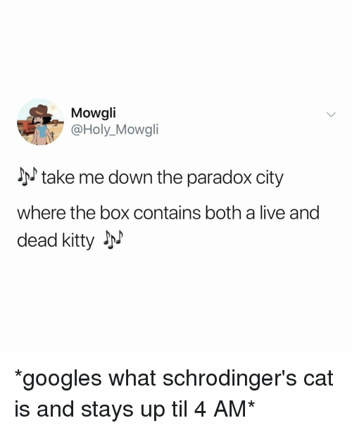 Live, Paradox, and Relatable: Mowgli  @Holy_Mowgli  take me down the paradox city  where the box contains both a live and  dead kitty JM *googles what schrodinger's cat is and stays up til 4 AM*