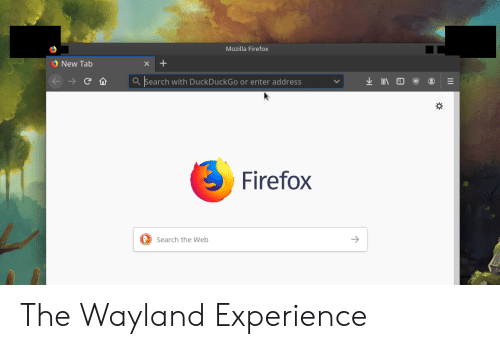Mozilla Firefox New Tab X lIN ED Search With DuckDuckGo or