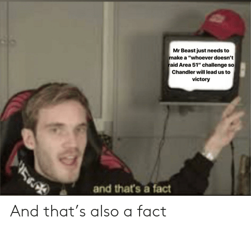 "Dank Memes, Area 51, and Raid: Mr Beast just needs to  make a ""whoever doesn't  raid Area 51"" challenge so  Chandler will lead us to  victory  and that's a fact  5 And that's also a fact"
