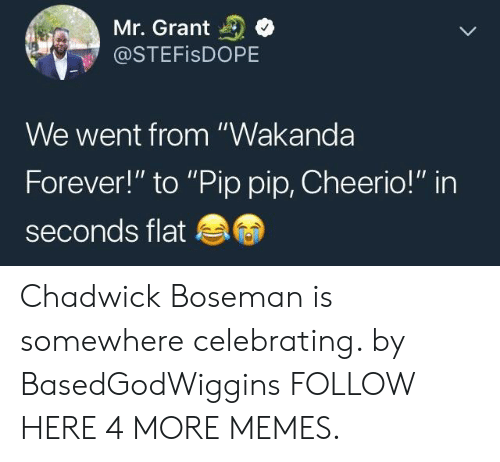 """Dank, Memes, and Target: Mr. Grant  @STEFISDOPE  We went from """"Wakanda  Forever!"""" to """"Pip pip, Cheerio!"""" in  seconds flat Chadwick Boseman is somewhere celebrating. by BasedGodWiggins FOLLOW HERE 4 MORE MEMES."""