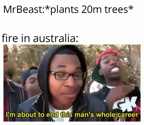 Fire, Australia, and Trees: MrBeast:*plants 20m trees*  fire in australia:  CK  I'm about to end this man's whole career