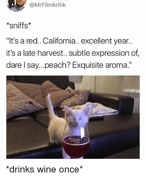 "Wine, California, and Girl Memes: @MrFilmkritik  *sniffs*  ""It's a red.. California.. excellent year..  it's a late harvest.. subtle expression of,  dare l say....peach? Exquisite aroma."" *drinks wine once*"