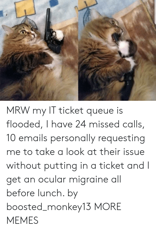 Dank, Memes, and Mrw: MRW my IT ticket queue is flooded, I have 24 missed calls, 10 emails personally requesting me to take a look at their issue without putting in a ticket and I get an ocular migraine all before lunch. by boosted_monkey13 MORE MEMES