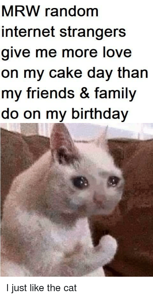 Birthday, Family, and Friends: MRW random  internet strangers  give me more love  on my cake day than  my friends & family  do on my birthday I just like the cat