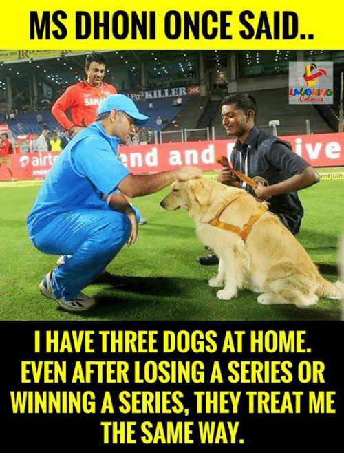 Dogs, Home, and Indianpeoplefacebook: MS DHONI ONCE SAID  eg KILLER  and and  air  Stent uitr  I HAVE THREE DOGS AT HOME.  EVEN AFTER LOSINGASERIES OR  WINNING A SERIES, THEY TREAT ME  THE SAME WAY
