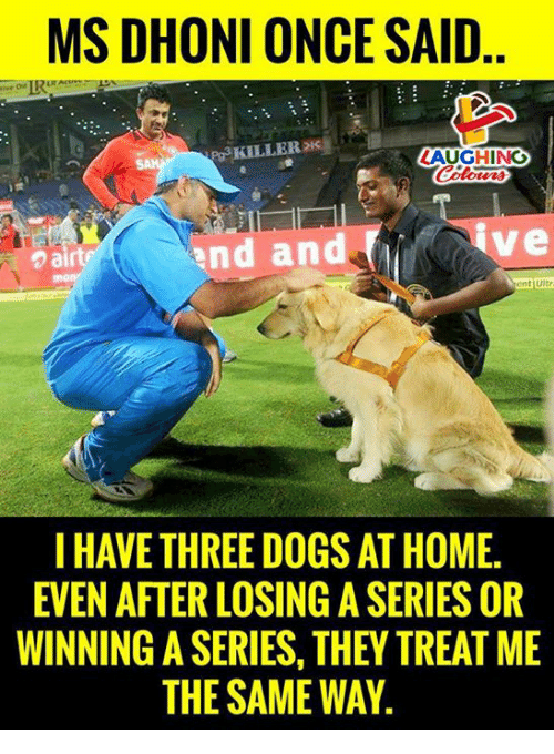 Dogs, Home, and Indianpeoplefacebook: MS DHONI ONCE SAID  Pg3 KILLERDI  AUGHING  nd and  ve  ent Ultr  I HAVE THREE DOGS AT HOME.  EVEN AFTER LOSING A SERIES OR  WINNING A SERIES, THEY TREAT ME  THE SAME WAY