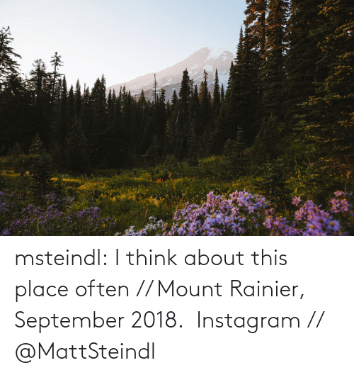Instagram, Target, and Tumblr: msteindl: I think about this place often // Mount Rainier, September 2018.    Instagram // @MattSteindl