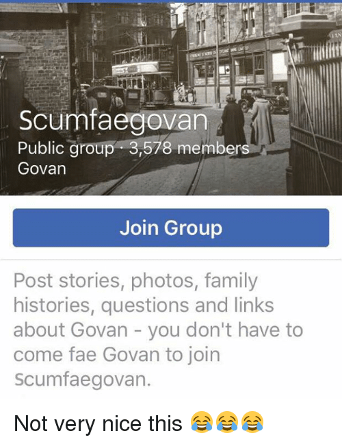 Fae Family And Memes Mtaceoven Scumfaegovan Public Group 3578 Members Govan Join