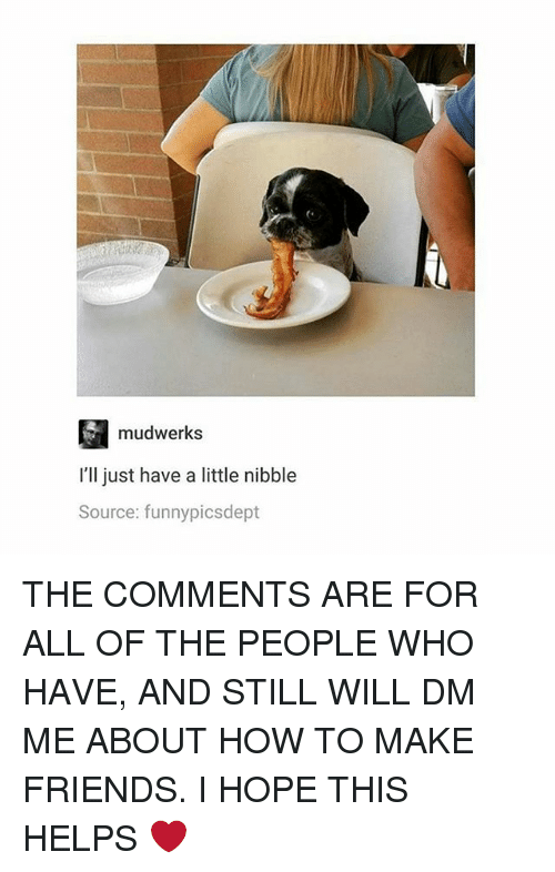 Friends, Memes, and How To: mudwerks  I'll just have a little nibble  Source: funnypicsdept THE COMMENTS ARE FOR ALL OF THE PEOPLE WHO HAVE, AND STILL WILL DM ME ABOUT HOW TO MAKE FRIENDS. I HOPE THIS HELPS ❤