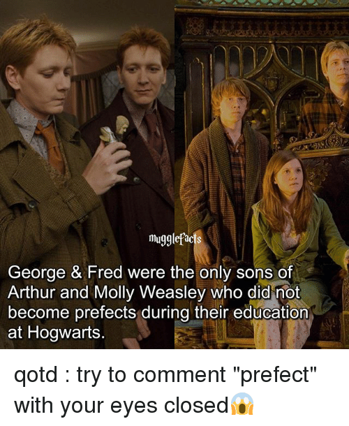 "Arthur, Memes, and Molly: mug9  eorge & Fred were the only sons o  Arthur and Molly Weasley who did mot  become prefects during their education  at Hogwarts qotd : try to comment ""prefect"" with your eyes closed😱"