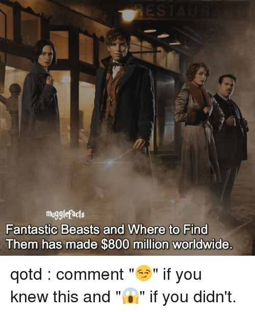 """Memes, 🤖, and Fantastic Beasts and Where to Find Them: muggle acts  Fantastic Beasts and Where to Find  Them has made $800 million worldwide qotd : comment """"😏"""" if you knew this and """"😱"""" if you didn't."""