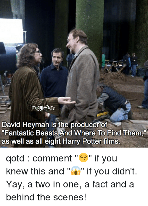 """Harry Potter, Memes, and 🤖: mugglefacts  David Heyman is the producer of  """"Fantastic Beasts And Where To Find Them  as well as all eight Harry Potter films. qotd : comment """"😏"""" if you knew this and """"😱"""" if you didn't. Yay, a two in one, a fact and a behind the scenes!"""