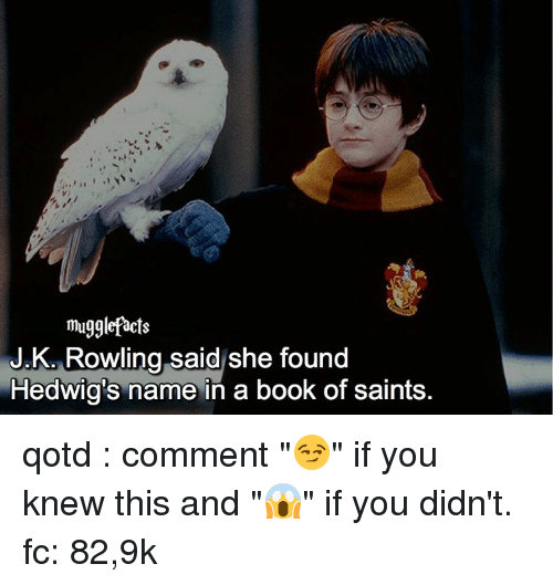 "Books, Memes, and Book: mugglefacts  JK Rowling said she found  Hedwig's name in a book of saints qotd : comment ""😏"" if you knew this and ""😱"" if you didn't. fc: 82,9k"