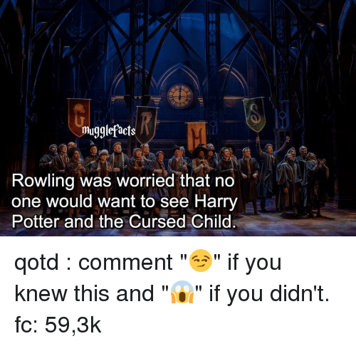 """Harry Potter, Memes, and 🤖: mugglefacts  Rowling was worried that no  one would want to see Harry  Potter and the Cursed Child qotd : comment """"😏"""" if you knew this and """"😱"""" if you didn't. fc: 59,3k"""