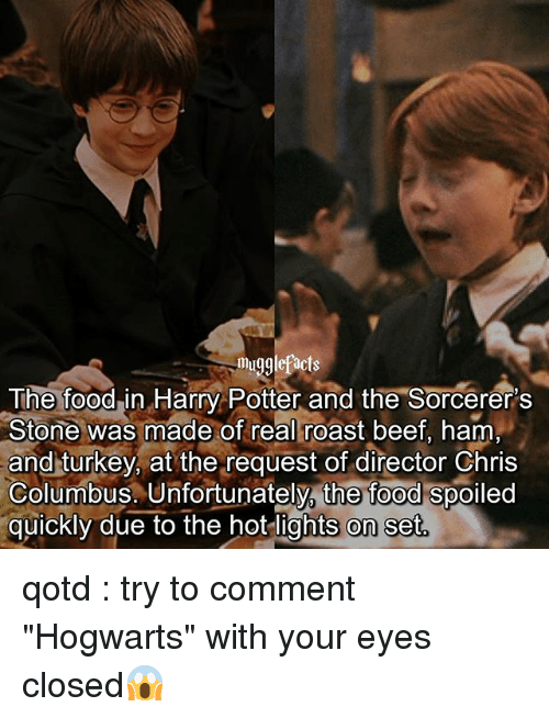 """Beef, Food, and Harry Potter: mugglefacts  The foodin Harry Potter and the Sorcerer's  Stone was made of real roast beef, ham  and turkey, at the request of director Chris  Columbus. Unfortunately, the food spoiled  quickly due to the hot lights on set qotd : try to comment """"Hogwarts"""" with your eyes closed😱"""