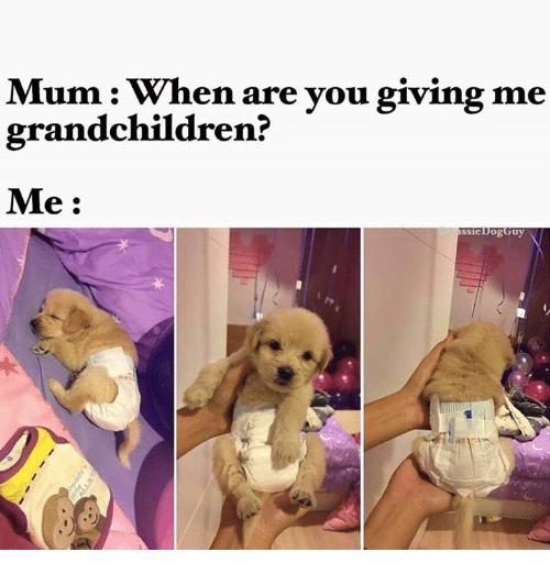 https://pics.me.me/mum-when-are-you-giving-me-grandchildren-me-ogguy-ssie-4477402.png