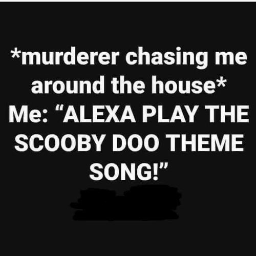 "Scooby Doo, House, and Song: *murderer chasing me  around the house*  Me: ""ALEXA PLAY THE  SCOOBY DOO THEME  SONG!"""