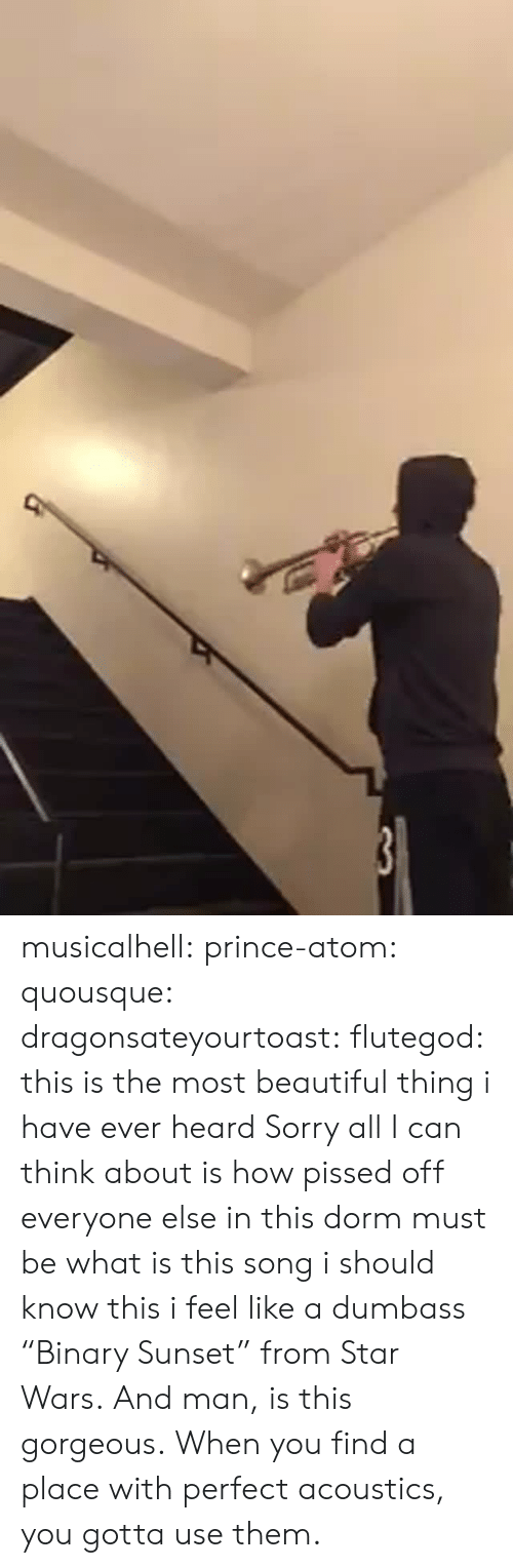 "Beautiful, Prince, and Sorry: musicalhell:  prince-atom:  quousque:  dragonsateyourtoast:  flutegod: this is the most beautiful thing i have ever heard  Sorry all I can think about is how pissed off everyone else in this dorm must be  what is this song i should know this i feel like a dumbass   ""Binary Sunset"" from Star Wars. And man, is this gorgeous.  When you find a place with perfect acoustics, you gotta use them."