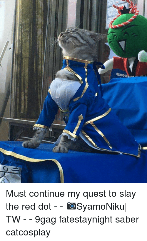 9gag, Memes, and Quest: Must continue my quest to slay the red dot - - 📷SyamoNiku| TW - - 9gag fatestaynight saber catcosplay