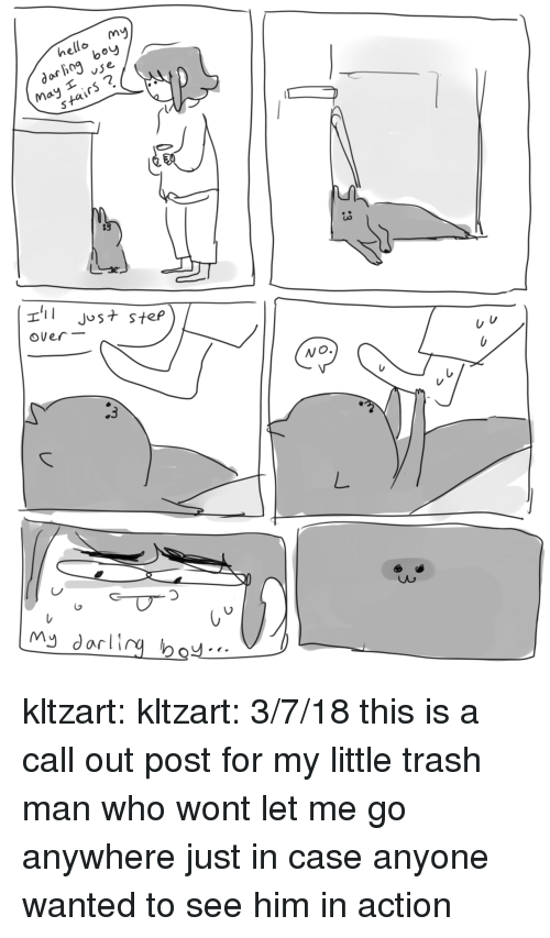 Hello, Trash, and Tumblr: [mvy  hello m  darhog bo  May vse  stairs?  83  Jus+ step  over-  Wo.  しし kltzart:  kltzart:   3/7/18 this is a call out post for my little trash man who wont let me go anywhere   just in case anyone wanted to see him in action
