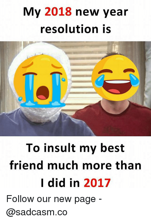 Best Friend, Memes, and New Year's: My 2018 new year  resolution is  To insult my best  friend much more tharn  I did in 2017 Follow our new page - @sadcasm.co