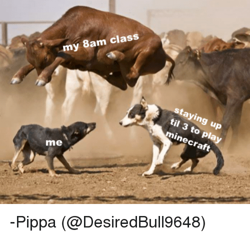 Minecraft, Class, and Til: my 8am class  staying up  til 3 to  minecraft  play  me -Pippa (@DesiredBull9648)