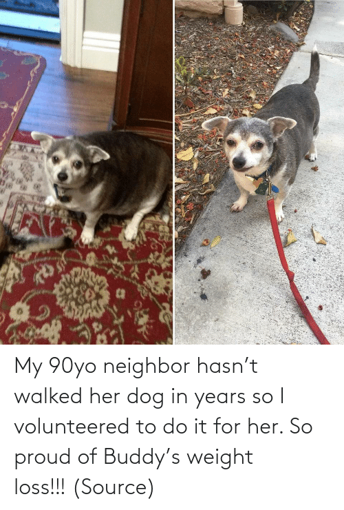 Aww, Reddit, and Target: My 90yo neighbor hasn't walked her dog in years so I volunteered to do it for her. So proud of Buddy's weight loss!!! (Source)