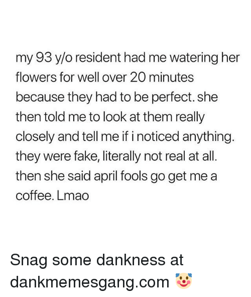 Fake, Lmao, and Memes: my 93 y/o resident had me watering her  flowers for well over 20 minutes  because they had to be perfect.she  then told me to look at them really  closely and tell me if i noticed anything  they were fake, literally not real at all.  then she said april fools go get me a  coffee. Lmao Snag some dankness at dankmemesgang.com 🤡