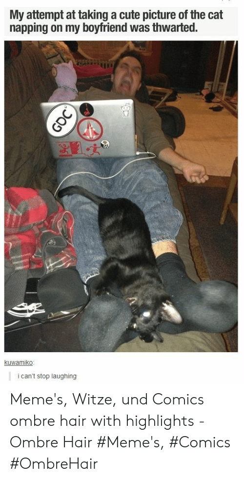 Cute, Memes, and Hair: My attempt at taking a cute picture of the cat  napping on my boyfriend was thwarted.  kuwamiko  i can't stop laughing  GOC Meme's, Witze, und Comics ombre hair with highlights - Ombre Hair #Meme's, #Comics #OmbreHair