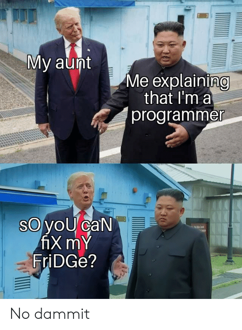Fridge, Can, and Aunt: My aunt  Me explaining  that I'm a  programmer  oyoU caN  fiX mY  FriDGe? No dammit