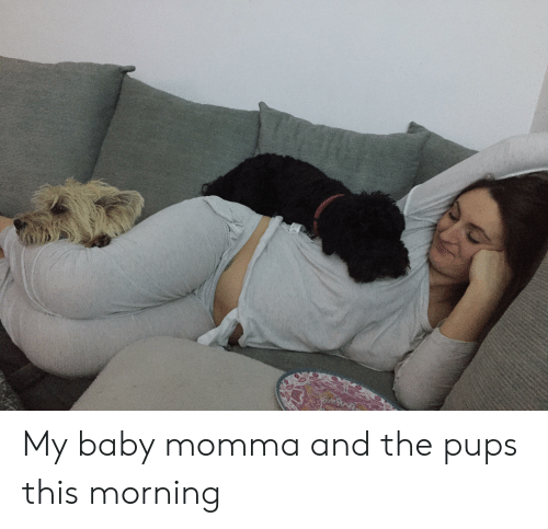 Baby Momma, Baby, and This: My baby momma and the pups this morning