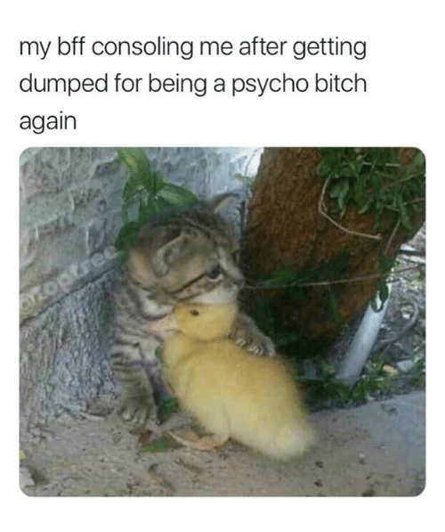 My Bff Consoling Me After Getting Dumped for Being a Psycho Bitch