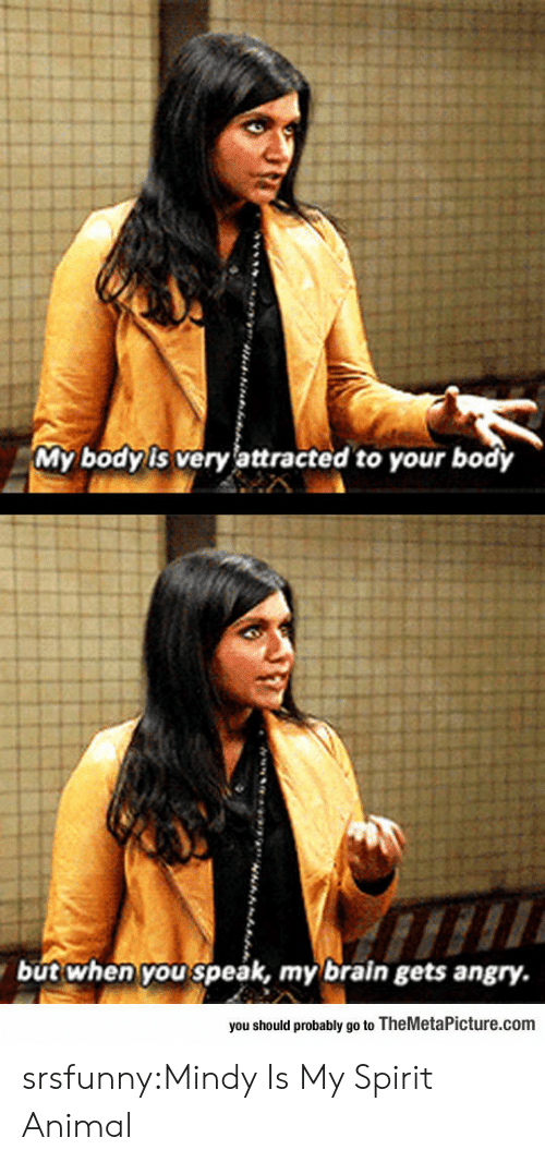 Tumblr, Animal, and Blog: My body is very lattracted to your body  but when you speak, my brain gets angry.  you should probably go to TheMetaPicture.com srsfunny:Mindy Is My Spirit Animal