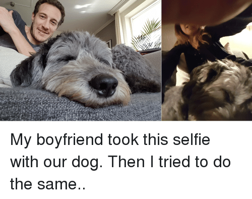 Funny Memes For Your Boyfriend : My boyfriend took this selfie with our dog then i tried to do the