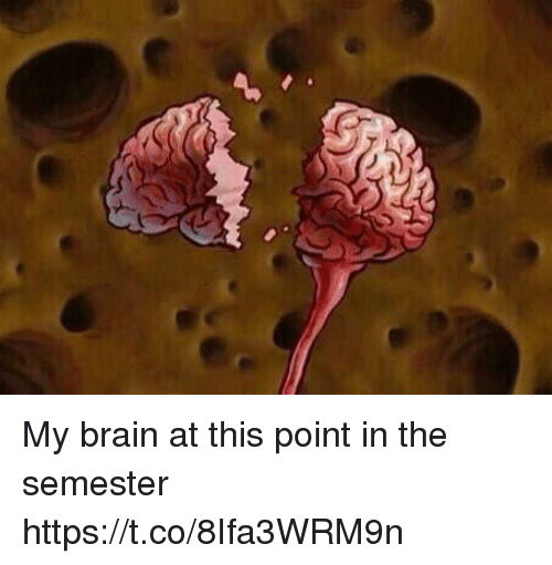 Brain, Relatable, and This: My brain at this point in the semester https://t.co/8Ifa3WRM9n