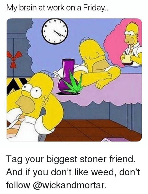 Friday, Memes, and Weed: My brain at work on a Friday.. Tag your biggest stoner friend. And if you don't like weed, don't follow @wickandmortar.