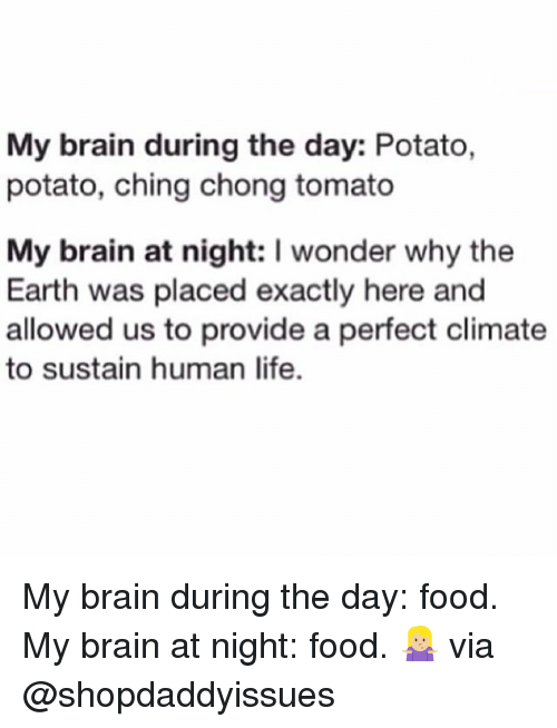 Food, Life, and Brain: My brain during the day: Potato,  potato, ching chong tomato  My brain at night: I wonder why the  Earth was placed exactly here and  allowed us to provide a perfect climate  to sustain human life. My brain during the day: food. My brain at night: food. 🤷🏼‍♀️ via @shopdaddyissues