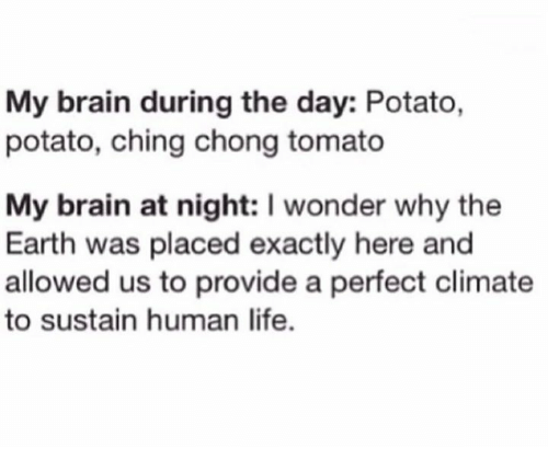 Dank, Life, and Brain: My brain during the day: Potato,  potato, ching chong tomato  My brain at night: I wonder why the  Earth was placed exactly here and  allowed us to provide a perfect climate  to sustain human life.