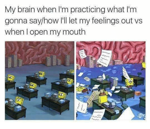 Memes, Brain, and 🤖: My brain when I'm practicing what I'm  gonna say/how I'll let my feelings out vs  when l open my mouth