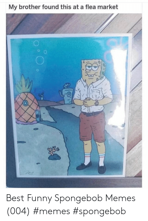 Funny, Memes, and SpongeBob: My brother found this at a flea market Best Funny Spongebob Memes (004) #memes #spongebob