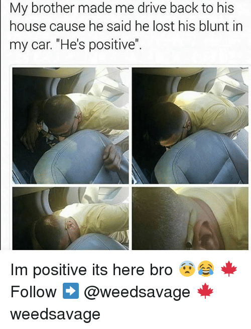 "Memes, Lost, and Drive: My brother made me drive back to his  house cause he said he lost his blunt in  my car. ""He's positive"" Im positive its here bro 😨😂 🍁Follow ➡ @weedsavage 🍁 weedsavage"
