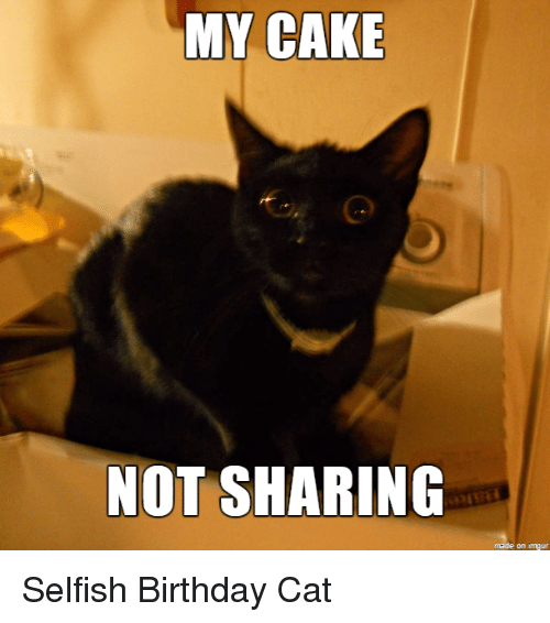 Birthday Cake And Cat MY CAKE NOT SHARING Made On Inngur