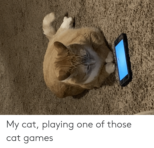🔥 25+ Best Memes About Cat Game | Cat Game Memes