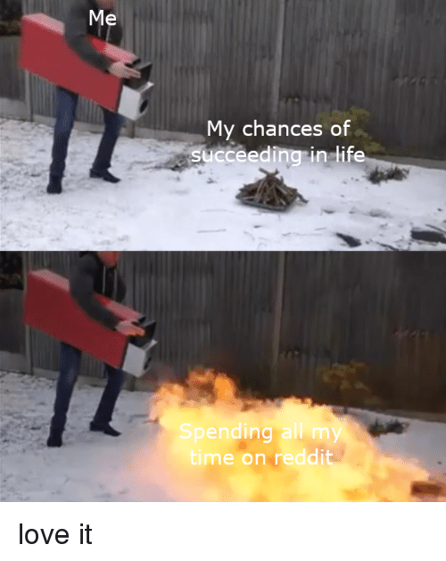 My Chances of Succeeding in Life Spending All My Time on Reddit