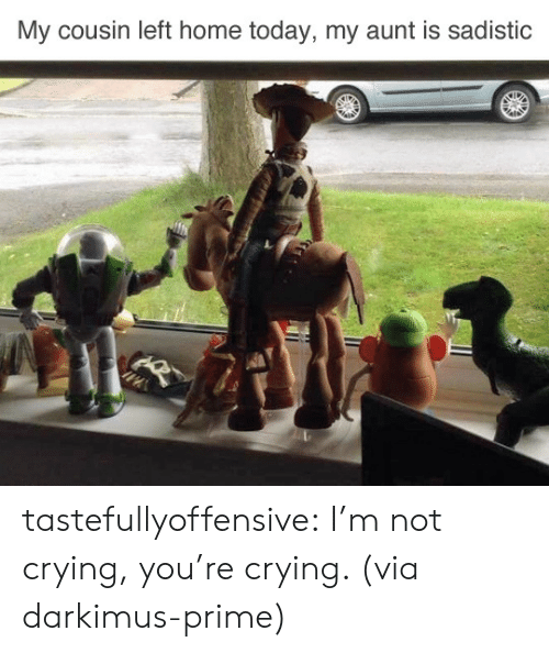 Crying, Not Crying, and Reddit: My cousin left home today, my aunt is sadistic tastefullyoffensive:  I'm not crying, you're crying. (via darkimus-prime)