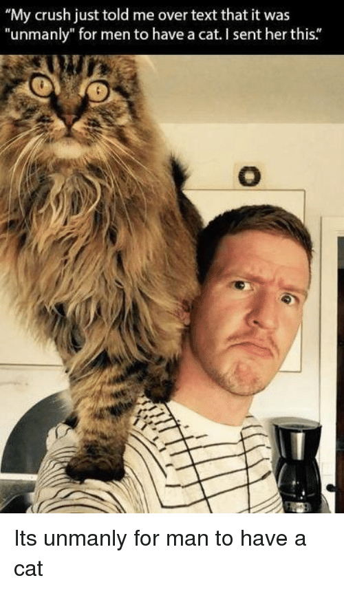 """Crush, Text, and Her: """"My crush just told me over text that it was  """"unmanly"""" for men to have a cat. I sent her this."""" Its unmanly for man to have a cat"""