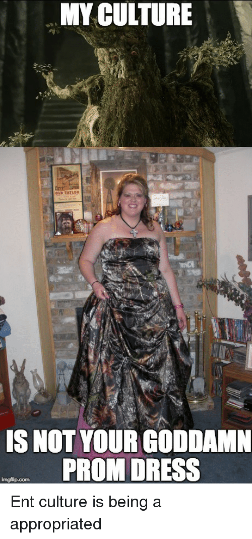 f3e0fdd982e MY CULTURE IS NOT YOUR GODDAMN PROM DRESS
