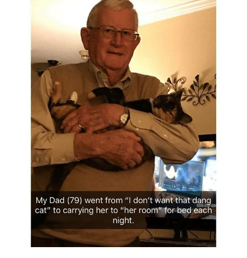 "Dad, Memes, and 🤖: My Dad (79) went from ""I don't want that dang  cat"" to carrying her to ""her room"" for bed each  night."