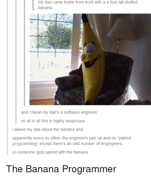 """Apparently, Dad, and Work: my dad came home from work with a 4 foot tall stuffed  banana  and i mean my dad's a software engineer  so all in all this is highly suspicious  i asked my dad about the banana and  apparently every so often, the engineers pair up and do """"paired  programming"""" except there's an odd number of engingeers  so someone gets paired with the banana The Banana Programmer"""
